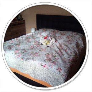 helfen wasserbetten bei r ckenschmerzen. Black Bedroom Furniture Sets. Home Design Ideas